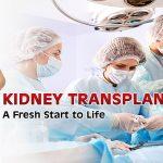 Renal Transplant Surgeon